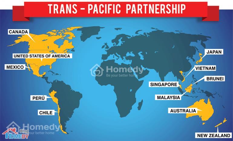 TPP la gi