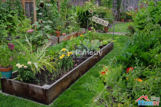 Những ý tưởng tuyệt vời để có khu vườn trong mơ 9