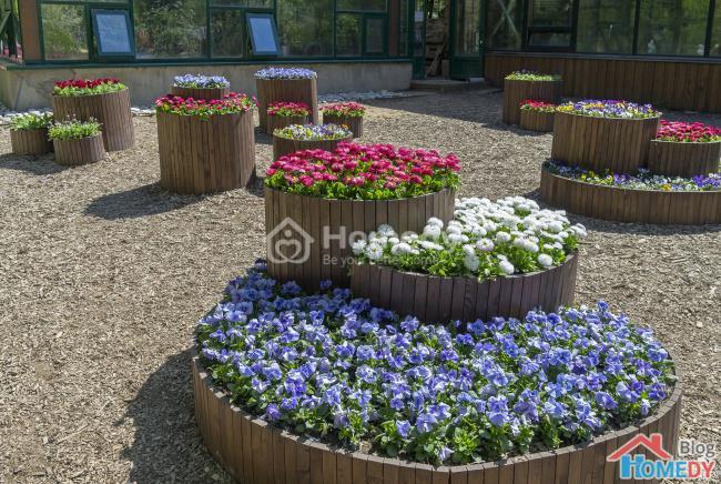 Những ý tưởng tuyệt vời để có khu vườn trong mơ2