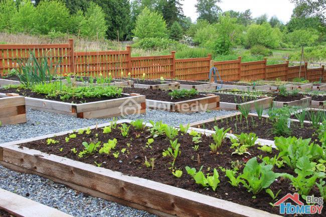 Làm khu vườn như thiết kế cầu thang 3