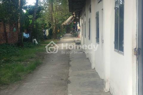 Xã Tam Phước: Cho thuê khu đất 11m*150m (mặt tiền đường Phùng Hưng)