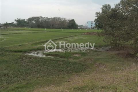 Bán đất đường Hồ Chí Minh, xã Hoà Khánh Tây, Đức Hòa, Long An