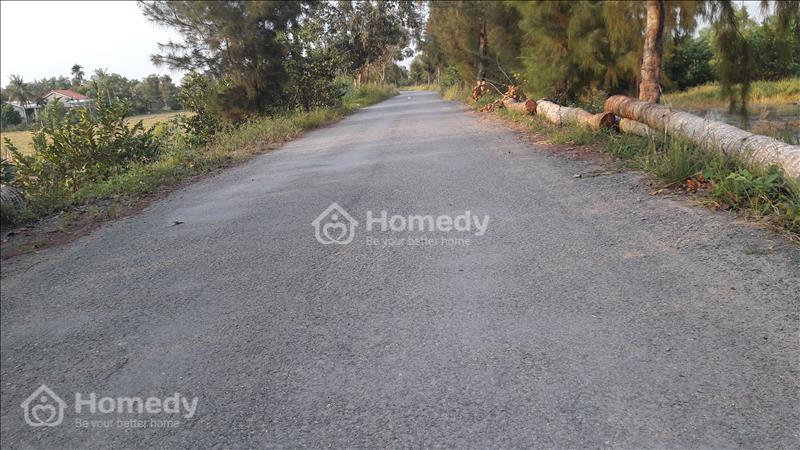 Cho thuê đất thổ cư 67m*40m mặt tiền đường Lương Ngang - Bình Chánh TPHCM - 1