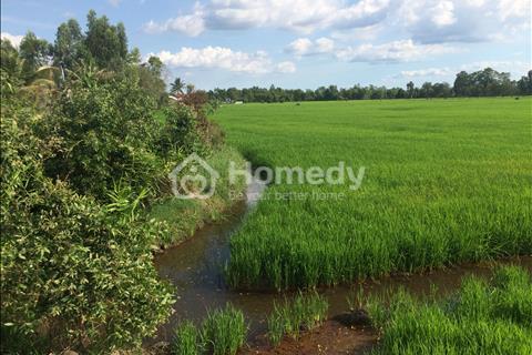 Bán đất mặt tiền TL 830 ấp Hóc Thơm, xã Hòa Khánh Tây, Đức Hòa, Long An