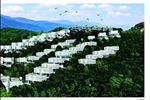 """Marina Hill Villa là một loại hình bất động sản mới trong phân khúc bất động sản nghỉ dưỡng tại Nha Trang. Marina Hill là sự kết hợp trọn vẹn, hoàn hảo của đồi và biển tạo nên """" bản giao hưởng của biển và thiên nhiên"""" theo đó với đầy đủ các phân khu chức năng bao gồm nhà hàng, osen, khu spa, phòng gym, khu thể thao, vui chơi, giải trí, hồ bơi, phòng đọc sách quốc tế…mang đến cho khách hàng những phút giây nghỉ dưỡng khó quên."""