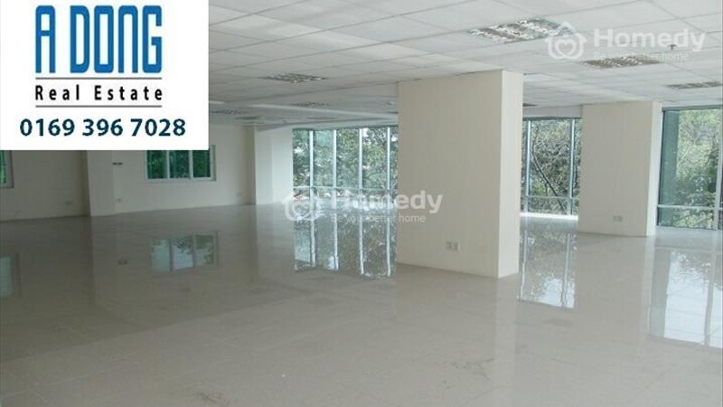 Cho thuê văn phòng tại Đường Tôn Thất Tùng, Quận 1, Tp.HCM diện tích 230m2 giá 98 Triệu/tháng - 2