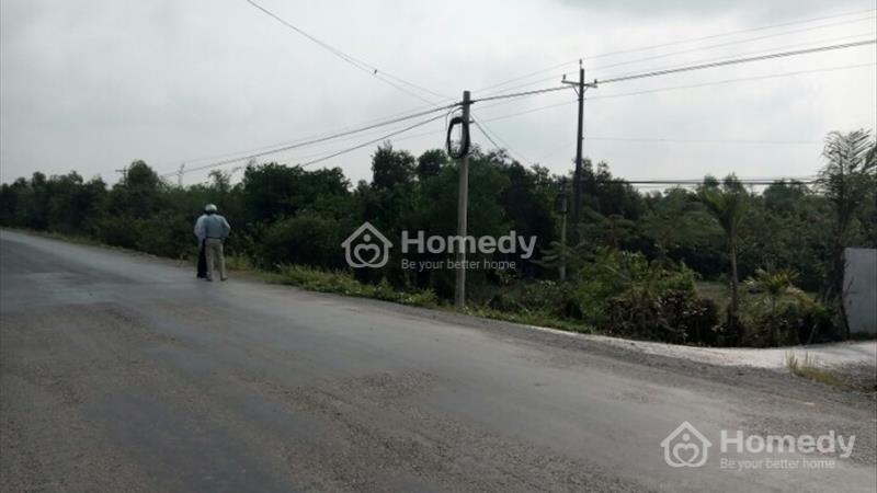 Bán đất làm nhà xưởng mặt tiền TL 823 xã Hòa Khánh Tây, Đức Hòa, Long An - 1