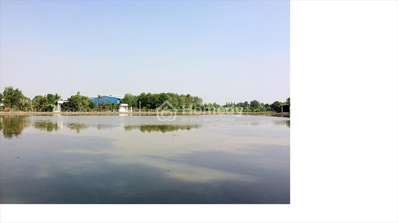 Đất vườn siêu rẻ tại Hưng Long Bình Chánh chỉ 1,5 triệu/m2 - 1