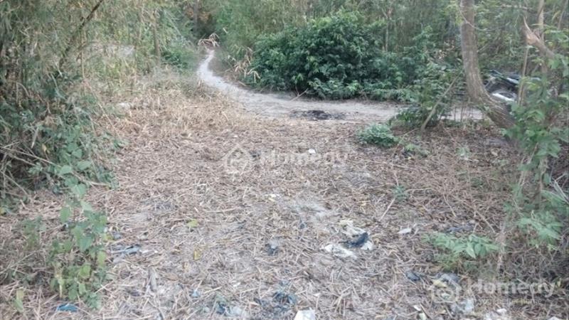 Bán đất thổ vườn xã Tân Mỹ, huyện Đức Hòa, Long An - 2