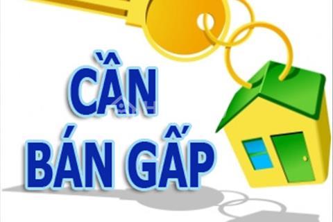 Cần bán căn hộ cao cấp The Flemington quận 11 - S116 m, 3 PN, 4,9 tỷ