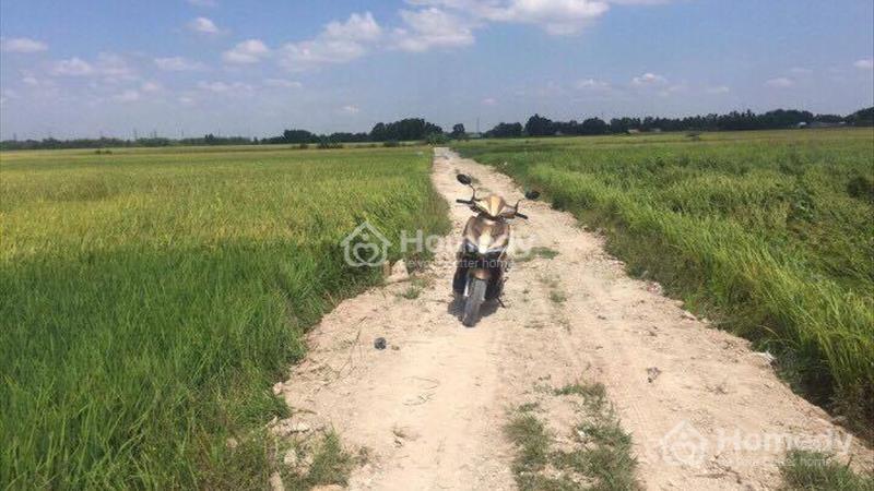 560 nghìn/m2 lô đất xã Vĩnh Thanh, Nhơn Trạch - Đồng Nai  - 3