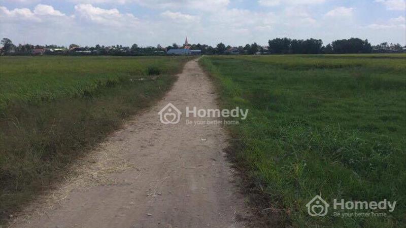 560 nghìn/m2 lô đất xã Vĩnh Thanh, Nhơn Trạch - Đồng Nai  - 2