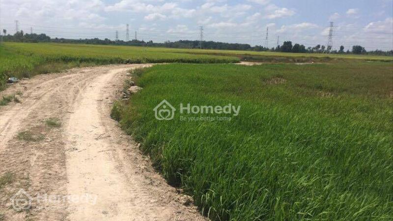 560 nghìn/m2 lô đất xã Vĩnh Thanh, Nhơn Trạch - Đồng Nai  - 1