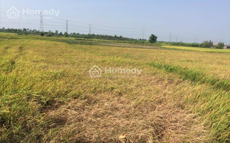Bán đất nền gấp Nhơn Trạch Đồng Nai, chỉ 400 nghìn/m2