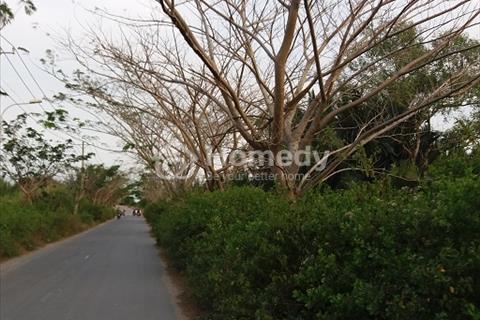 1000m2 đất vườn có ngay 300m2 thổ cư mặt tiền đường Long Thới Nhà Bè giá rẻ
