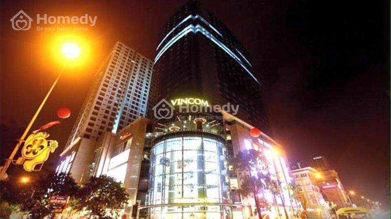 Cho thuê căn hộ cao cấp tại Vinhomes - Nguyễn Chí Thanh - 1