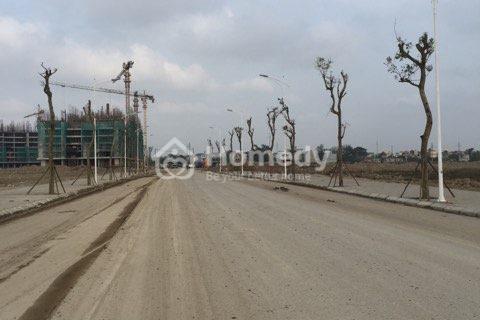 Thanh lý ô biệt thự khu đô thị Thanh Hà Cienco khu B2.1 đảo vip