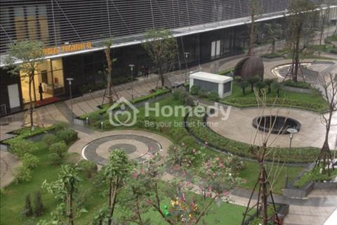 Chính chủ cho thuê căn hộ Tràng An complex, full đồ, 2 phòng ngủ, 14 triệu/tháng