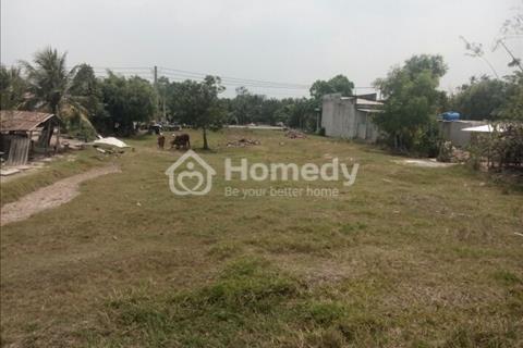 Bán đất TL 825 (QLl N2) xã Hòa Khánh Tây, Đức Hòa, Long An