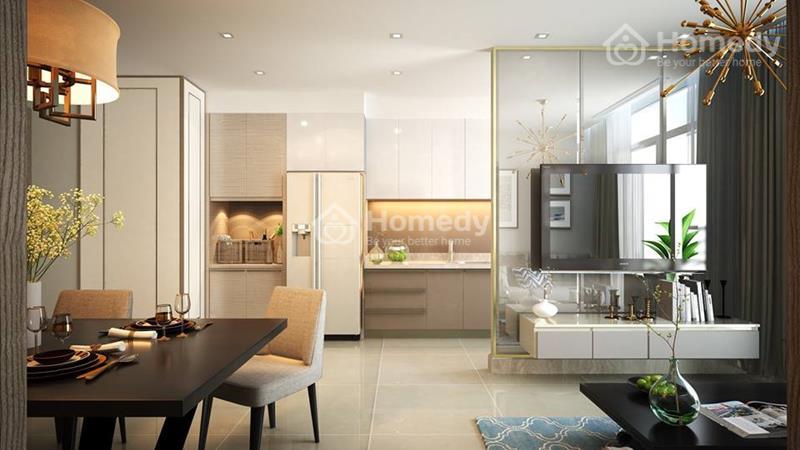 Cơ hội đầu tư căn hộ văn phòng Officetel - Dự án Pegasuite - Ngay mặt tiền đường Tạ Quang Bửu - 8