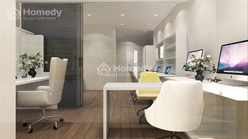 Cơ hội đầu tư căn hộ văn phòng Officetel - Dự án Pegasuite - Ngay mặt tiền đường Tạ Quang Bửu - 4
