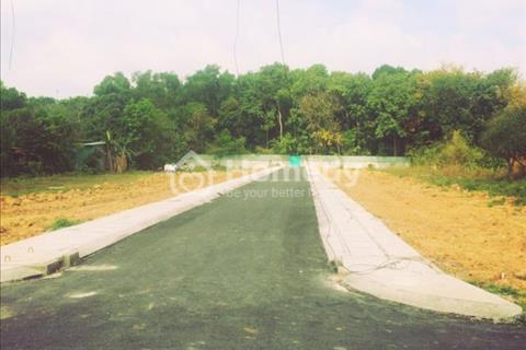 Bán gấp 2 lô đất ngay chợ Việt Kiều Củ Chi. Sổ hồng riêng - Giá 500 triệu/200 m2