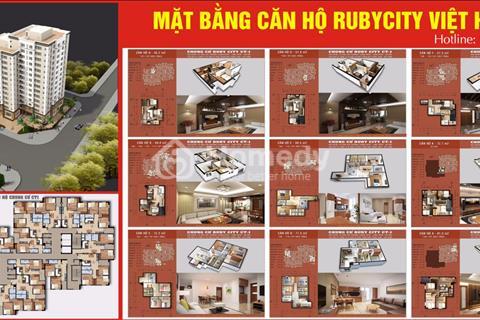 Sở hữu căn hộ đẹp nhất 1,4 tỷ tại Ruby City Long Biên ck6% GTCH+ full nội thất