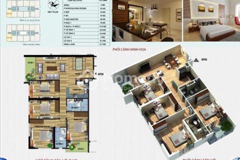 Chính chủ cần bán căn 1D, diện tích 148 m2, toà CT4 Vimeco giá chỉ 31,5 triệu/m2