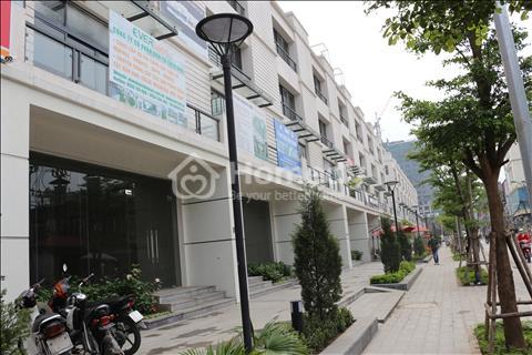 Chính chủ bán căn nhà vườn tại Thanh Xuân. Diện tích 146 m2. Giá 14 tỷ.