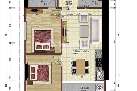 Gia đình tôi bán lại 2 căn hộ số 03: 68 m2 và số 09: 69 m2 dự án 219 Trung Kính.