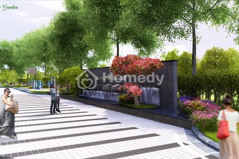 Chung cư Riverside Garden chỉ còn một căn 49,5 m2 duy nhất của dự án
