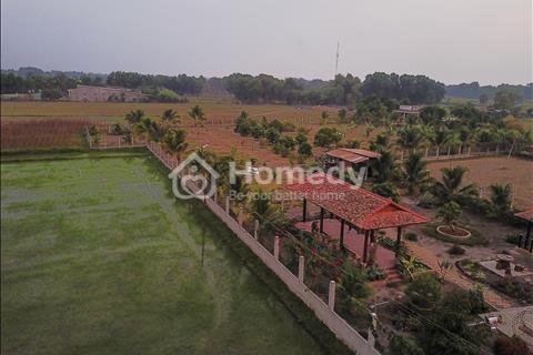 Cần bán khu vườn và nhà ở diện tích 6000m2 ở Hậu Nghĩa