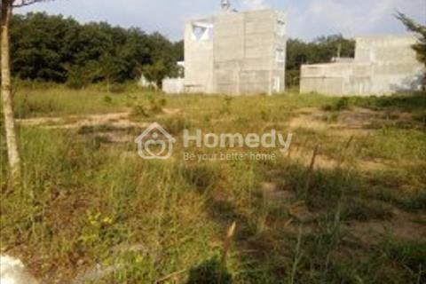 Bán 1.000 m2 đất nằm trong khu Trần Anh, xã Mỹ Hạnh Nam, huyện Đức Hoà, tỉnh Long An