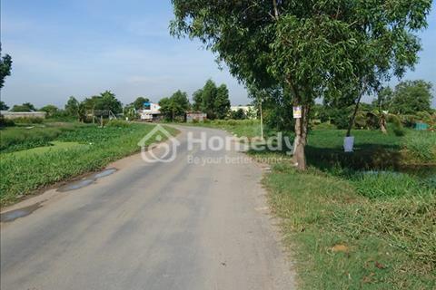 Bán gấp 3.050 m2 đất mặt tiền Hưng Long, Bình Chánh