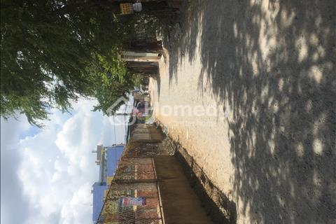 Nhanh tay sở hữu lô đất đầu tư vị trí vàng ngay Bình Hưng Hòa B, Bình Tân giá chỉ 26 triệu/m2