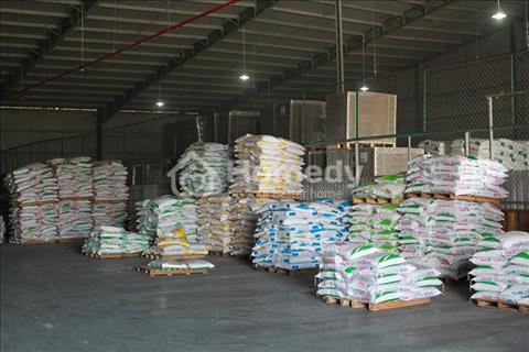 Chính chủ cho thuê kho xưởng tại Quận 7, Hồ Chí Minh
