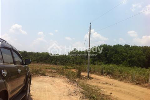 Đất vườn - Ao - Chuồng (VAC), cơ sở hạ tầng hoàn thiện