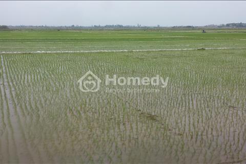 Bán đất nông nghiệp - đất ruộng quận Bắc Từ Liêm