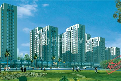 12 tỷ - Shophouse Sky Garden 3 mặt tiền Phạm Hữu Nghị - Phú Mỹ Hưng, đang cho Circle K thuê lâu dài