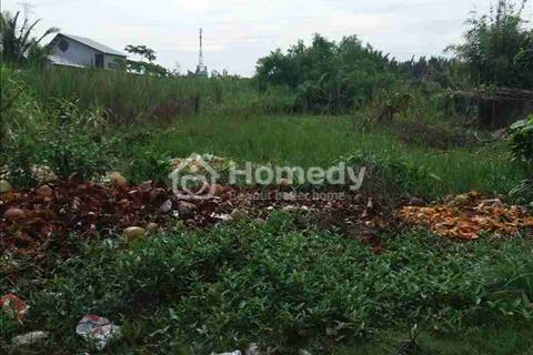 Ngân hàng phát mãi lô 3.000 m2 đất vườn Nguyễn Văn Tạo Nhà Bè đường nhựa 17 m giá 2,4 tỷ
