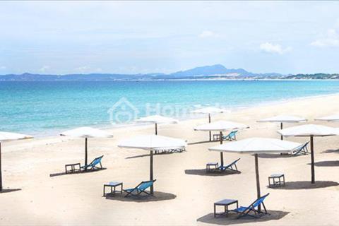 Đất nền Golden Bay - Bãi Dài Cam Ranh đáng để đầu tư, giá lên theo ngày, lợi nhuận cực tốt