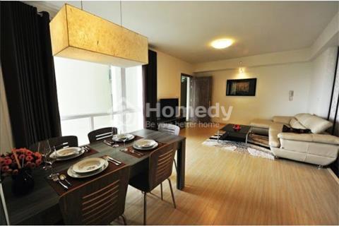 Cho thuê căn hộ mini, Nguyễn Thị Thập, Quận 7, giá tốt full nội thất