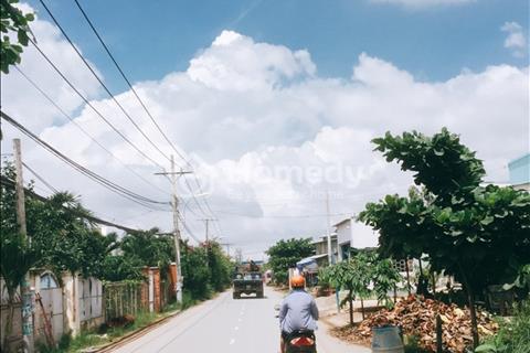 Bán đất nông nghiệp rẻ 1.000 m2 ở xã Quy Đức, huyện Bình Chánh