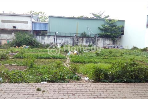 Bán lô đất biệt thự 12 x 20 m, đường 65 khu dân cư Tân Quy Đông, phường Tân Phong, Quận 7