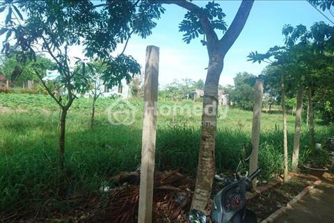 Chỉ 1,25 tỷ sở hữu ngay mảnh đất nông nghiệp 1.600 m2 Nguyễn Văn Thời, Bình Chánh, chính chủ