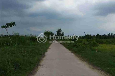 Bán 5.000 m2 đất thổ vườn mặt tiền đường 6 m, Nguyễn Văn Tạo, Nhà Bè, giá 800 ngàn/m2