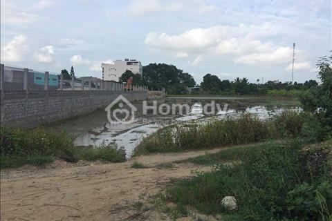 Bán đất nông nghiệp Diên An cho nhà đầu tư - Phân lô bán nền - Diện tích 945 m2
