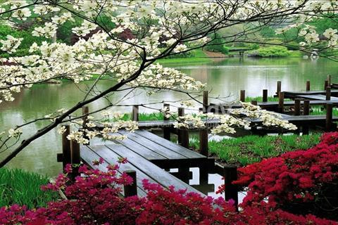 [HOT] Chỉ với 1,3 tỷ sở hữu ngay biệt thự Kai Resort Hòa Bình