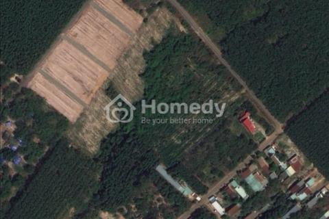 Bán đất xào 10.000 m2 sổ đỏ ngay cạnh khu công nghiệp Long Đức, Long Thành, Đồng Nai