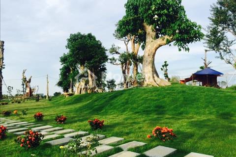 Bán đất nền biệt thự ven suối Phú Cát City giá chỉ từ 9 triệu/ m2
